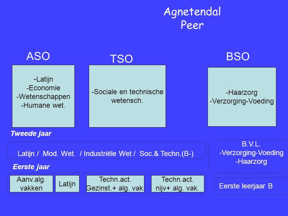 Eerste jaar Tweede jaar Agnetendal Peer Eerste leerjaar B B.V.L.