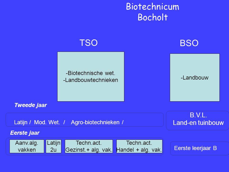 Eerste jaar Tweede jaar Biotechnicum Bocholt Eerste leerjaar B B.V.L.
