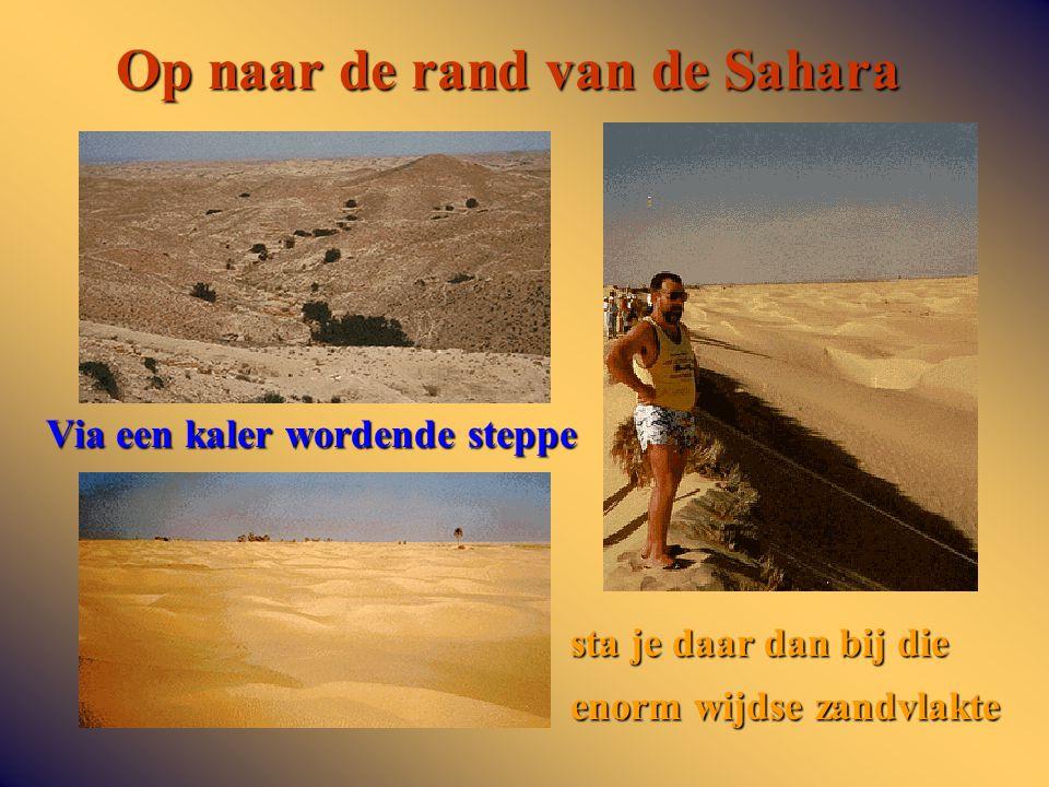 Op naar de rand van de Sahara Via een kaler wordende steppe sta je daar dan bij die enorm wijdse zandvlakte