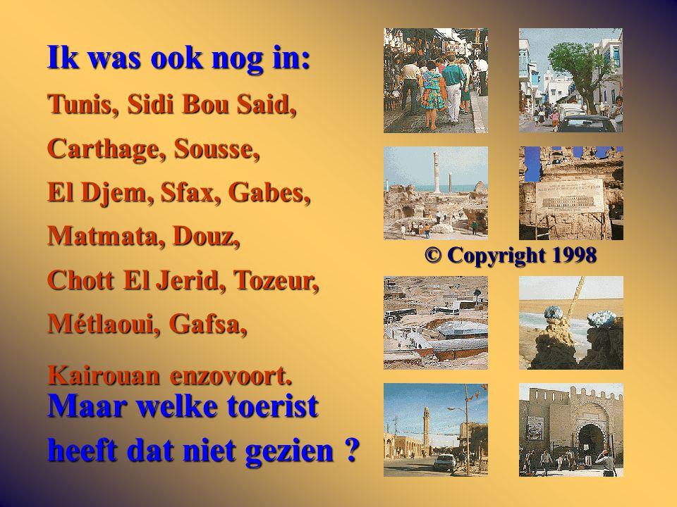 Ik was ook nog in: Tunis, Sidi Bou Said, Carthage, Sousse, El Djem, Sfax, Gabes, Matmata, Douz, Chott El Jerid, Tozeur, Métlaoui, Gafsa, Kairouan enzo