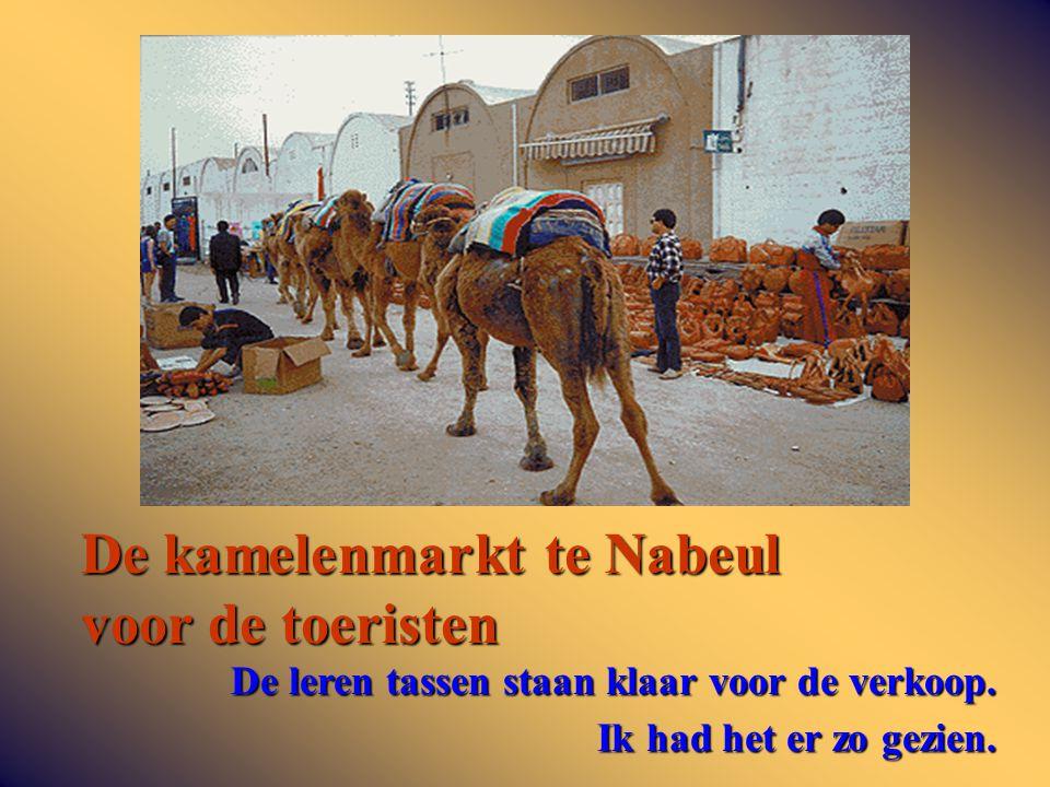 De kamelenmarkt te Nabeul voor de toeristen De leren tassen staan klaar voor de verkoop.