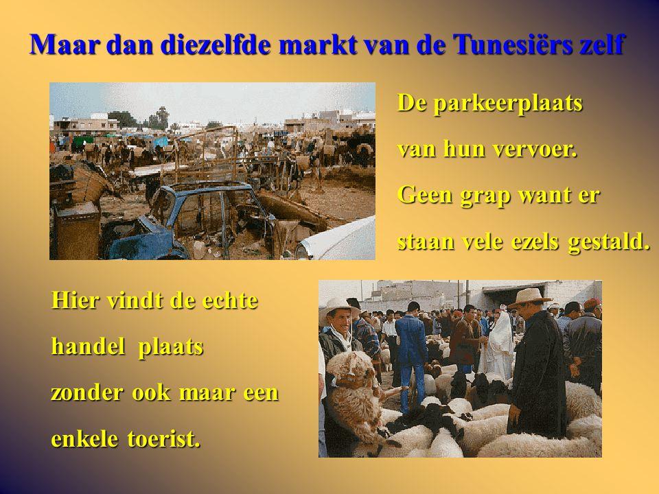 Maar dan diezelfde markt van de Tunesiërs zelf De parkeerplaats van hun vervoer.