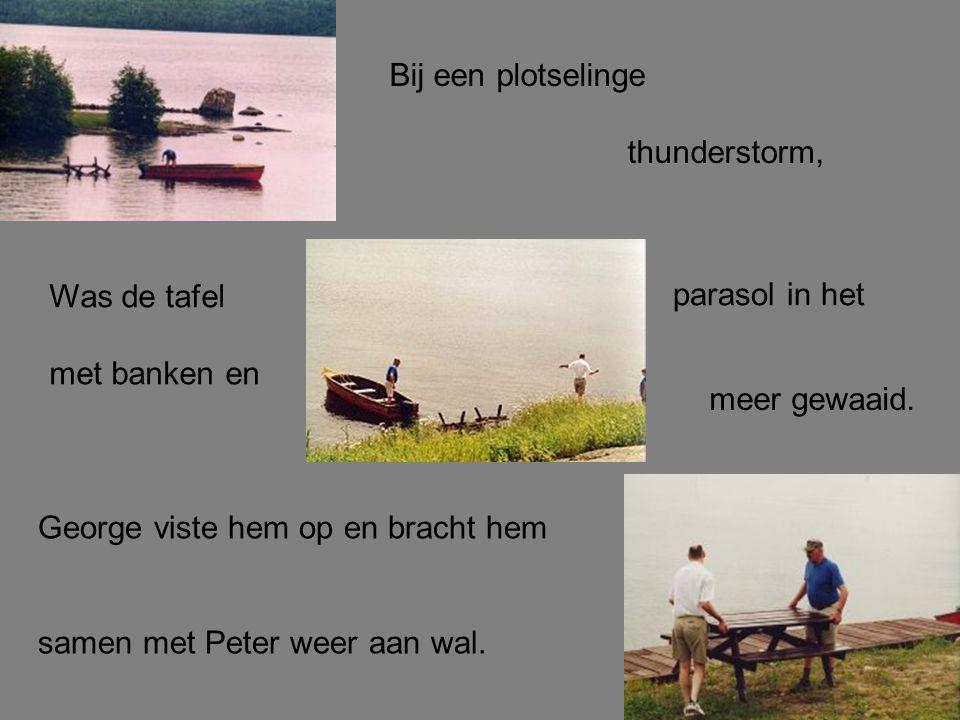 Bij een plotselinge thunderstorm, Was de tafel met banken en parasol in het meer gewaaid. George viste hem op en bracht hem samen met Peter weer aan w