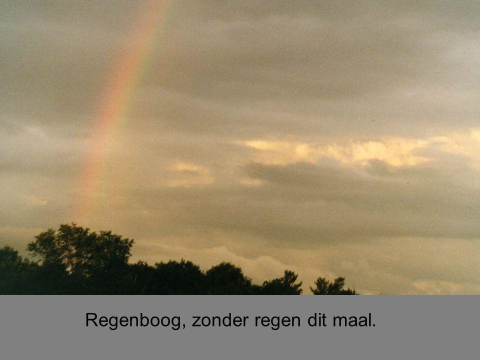Regenboog, zonder regen dit maal.