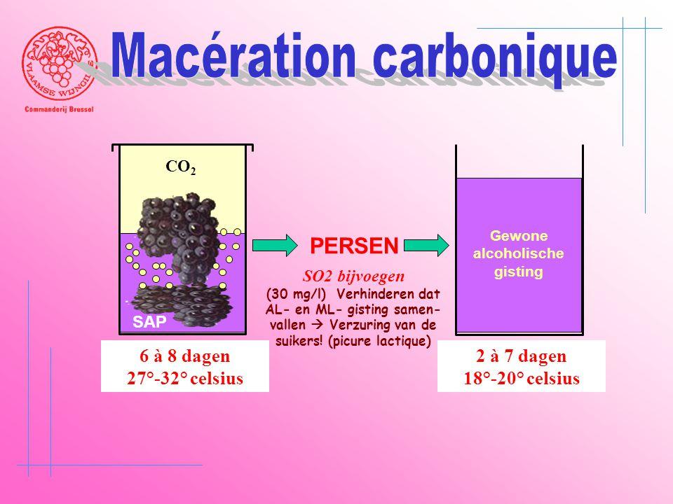 CO 2 SAP 6 à 8 dagen 27°-32° celsius PERSEN 2 à 7 dagen 18°-20° celsius Gewone alcoholische gisting SO2 bijvoegen (30 mg/l) Verhinderen dat AL- en ML-