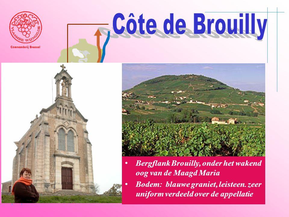 A6 Saône Belleville Le Bois d'oingt Villefranch e Beaujeu • Bergflank Brouilly, onder het wakend oog van de Maagd Maria • Bodem: blauwe graniet, leist
