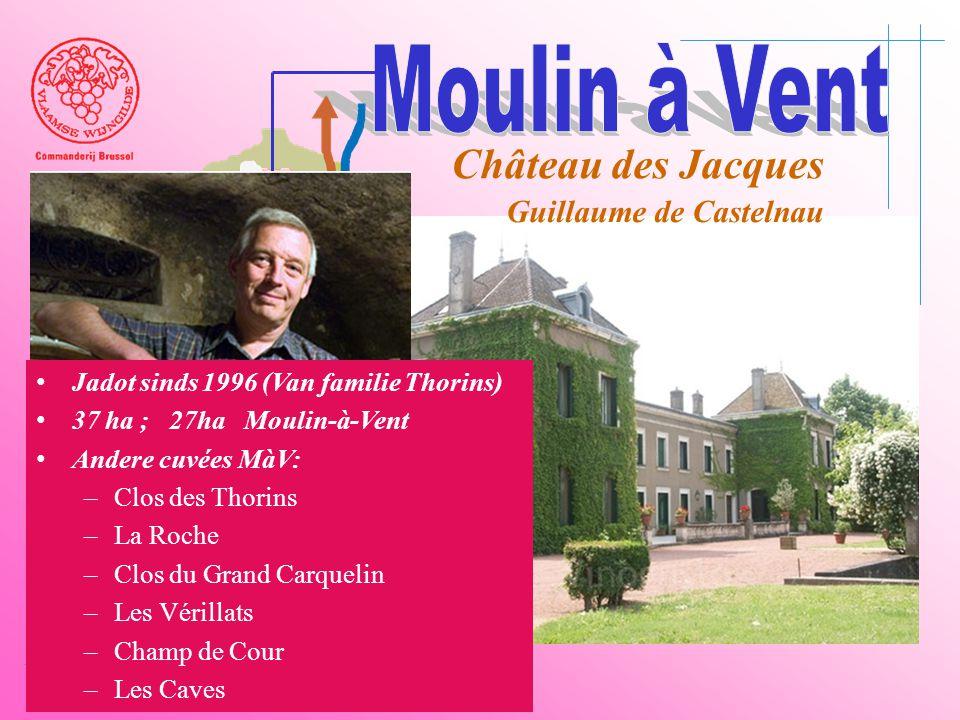 A6 Saône Belleville Le Bois d'oingt Villefranch e Beaujeu Château des Jacques Guillaume de Castelnau • Jadot sinds 1996 (Van familie Thorins) • 37 ha