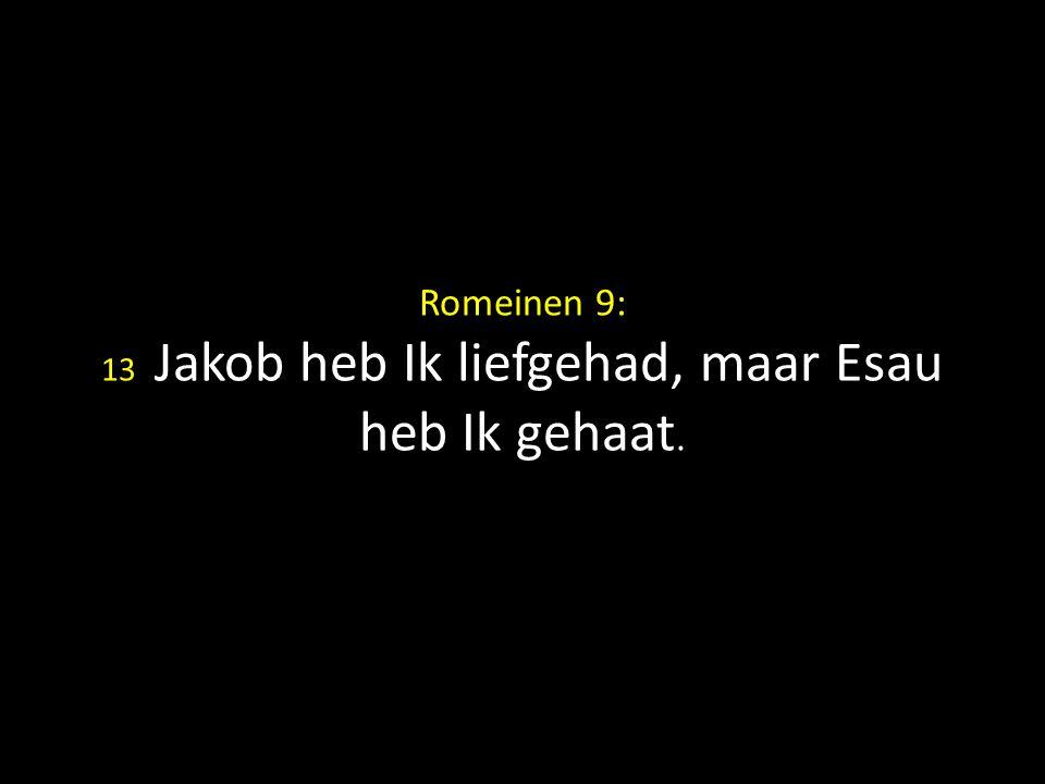 Romeinen 9: 13 Jakob heb Ik liefgehad, maar Esau heb Ik gehaat.