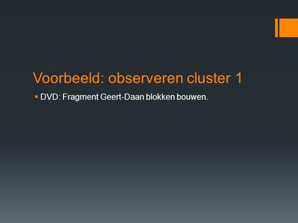 Voorbeeld: observeren cluster 1  DVD: Fragment Geert-Daan blokken bouwen.