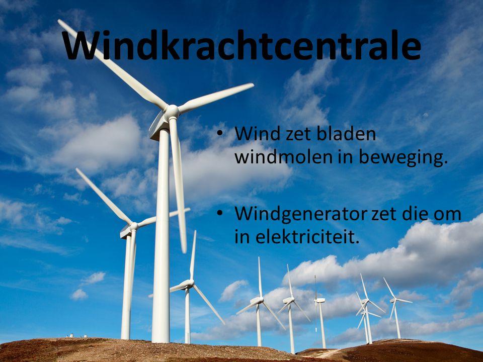 Windkrachtcentrale • Wind zet bladen windmolen in beweging. • Windgenerator zet die om in elektriciteit.
