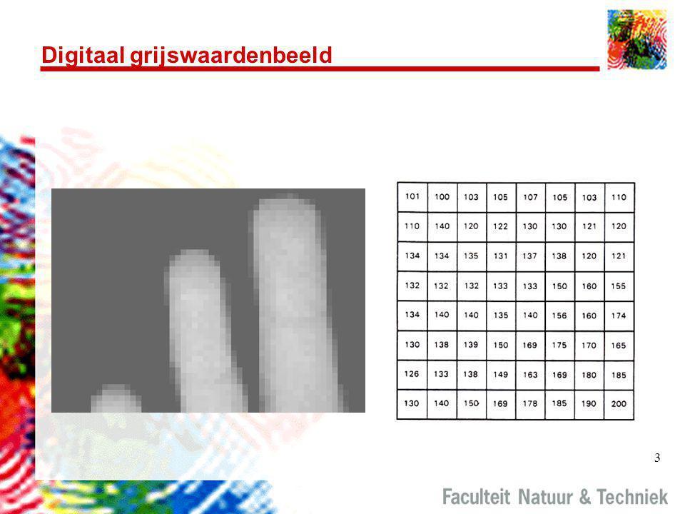 3 Digitaal grijswaardenbeeld