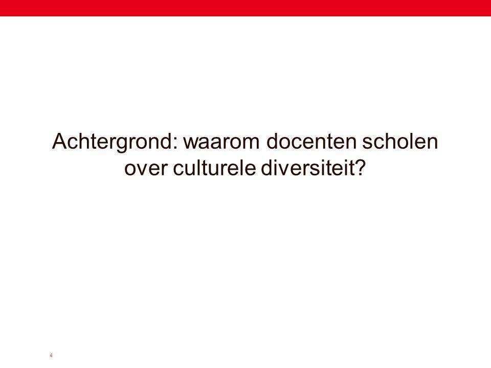 4 Achtergrond: waarom docenten scholen over culturele diversiteit?