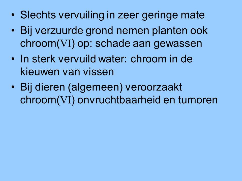 •Slechts vervuiling in zeer geringe mate •Bij verzuurde grond nemen planten ook chroom( VI ) op: schade aan gewassen •In sterk vervuild water: chroom in de kieuwen van vissen •Bij dieren (algemeen) veroorzaakt chroom( VI ) onvruchtbaarheid en tumoren