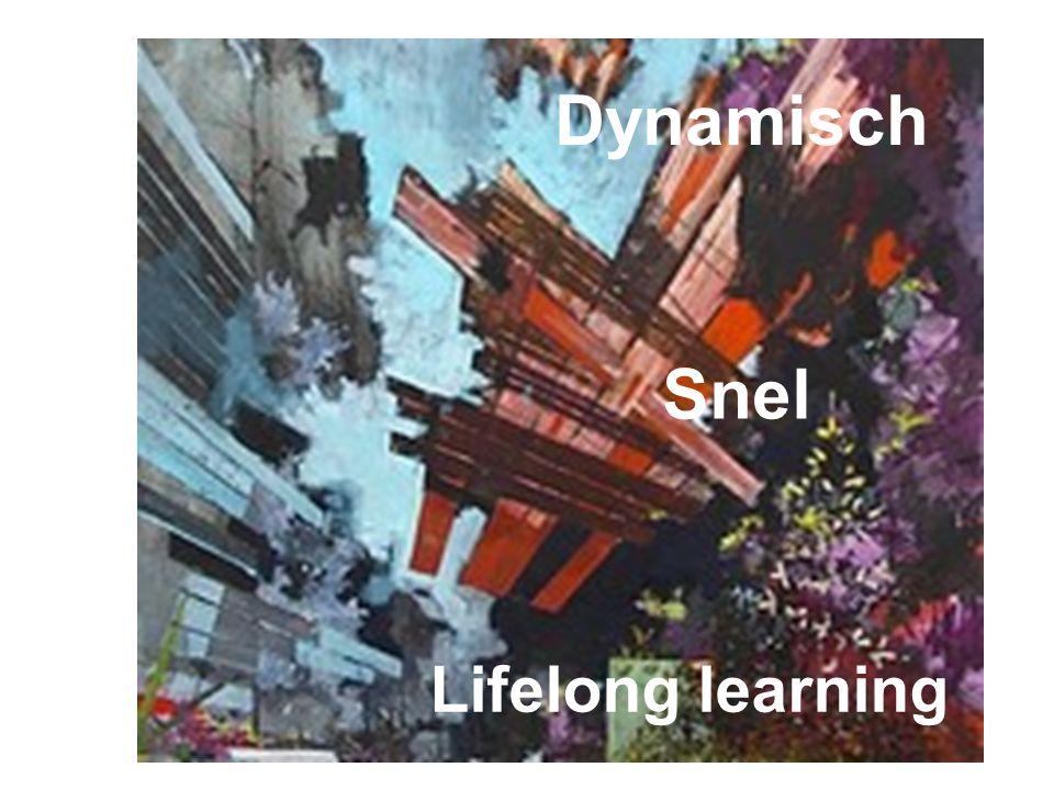 Dynamisch Snel Lifelong learning