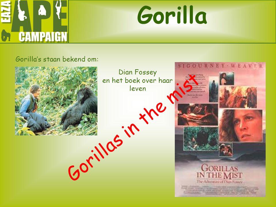 Gorilla Gorilla's staan bekend om: Gorillas in the mist Dian Fossey en het boek over haar leven