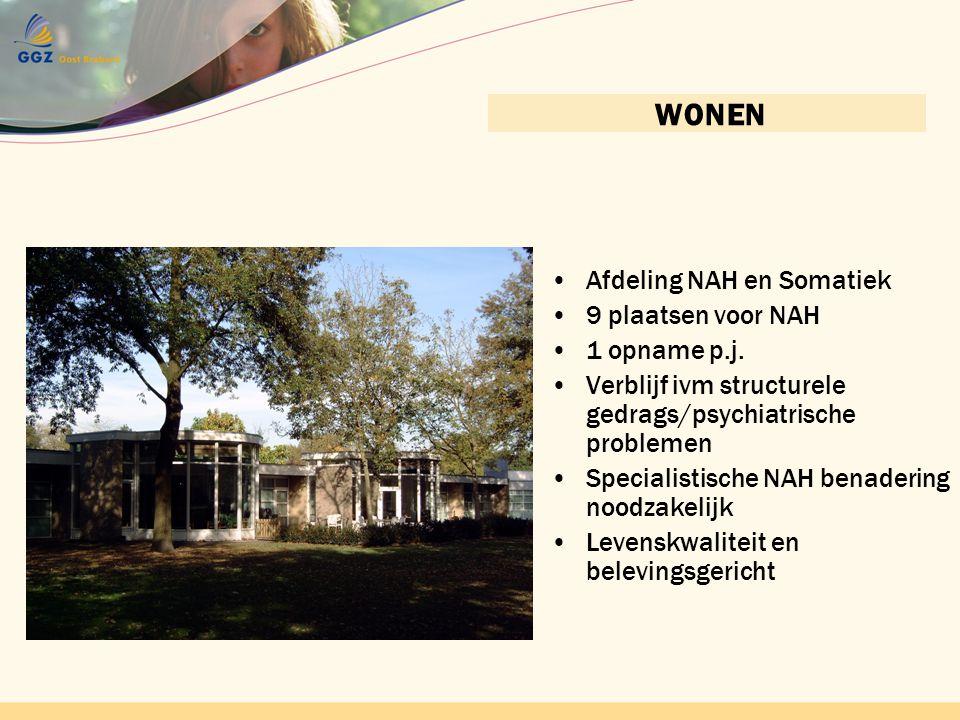 Contactnetwerk bijeenkomst 22 april 2010 GGZ Oost BrabantContactnetwerkbijeenkomst 22 april 2010 GGZ Oost Brabant WONEN •Afdeling NAH en Somatiek •9 p