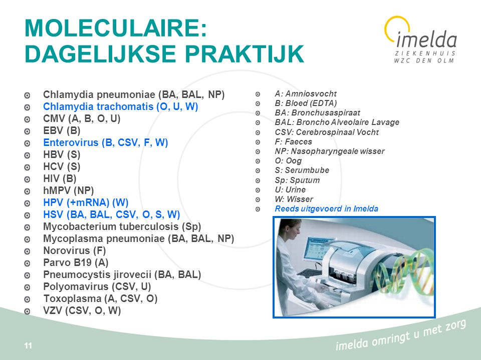 11 MOLECULAIRE: DAGELIJKSE PRAKTIJK Chlamydia pneumoniae (BA, BAL, NP) Chlamydia trachomatis (O, U, W) CMV (A, B, O, U) EBV (B) Enterovirus (B, CSV, F