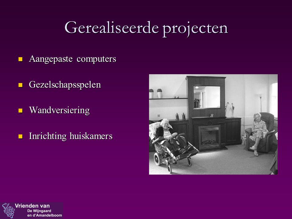 Gerealiseerde projecten  Aangepaste computers  Gezelschapsspelen  Wandversiering  Inrichting huiskamers