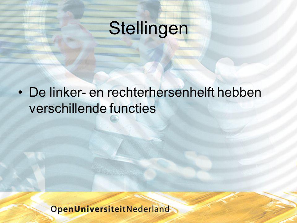 Strategieën •Interne strategieën Herhaling Betekenis geven (lager of hoger niveau) Ordening Visualiseren Verbanden leggen Method of Loci Ezelsbruggetjes verzinnen