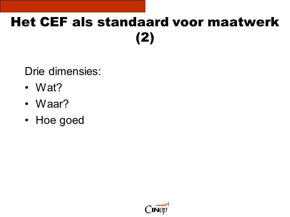 Het CEF als standaard voor maatwerk (2) Drie dimensies: •Wat? •Waar? •Hoe goed