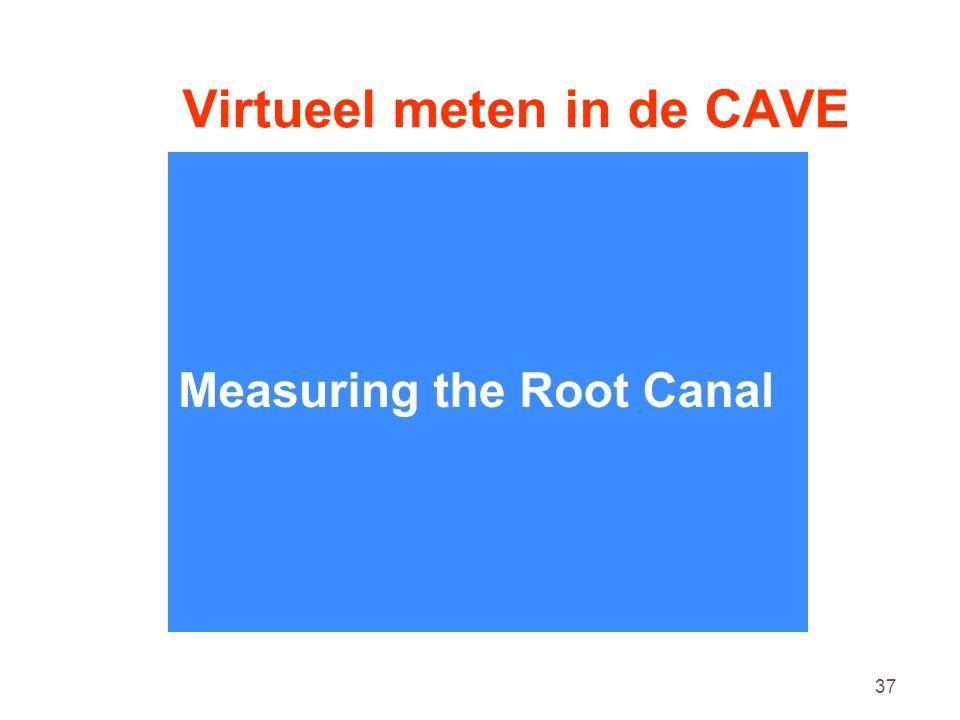 37 Virtueel meten in de CAVE