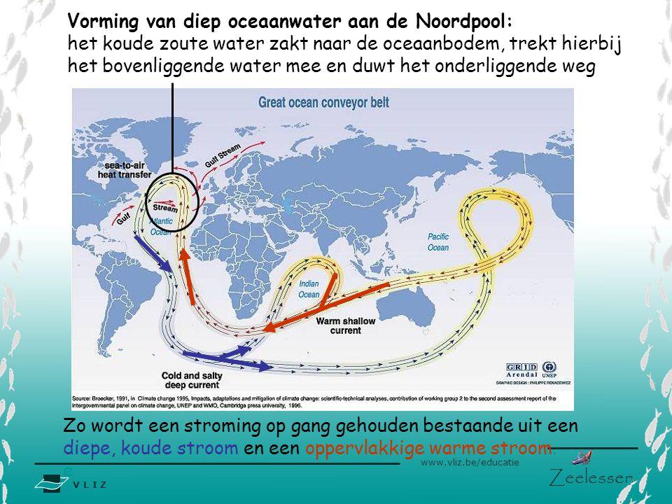 V L I Z www.vliz.be/educatie Zeelessen Zout water is denser dan zoet water en dus zwaarder. Aan de Noordpool koelt het water af en heeft dankzij de Go
