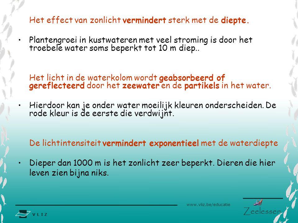 V L I Z www.vliz.be/educatie Zeelessen Het effect van zonlicht vermindert sterk met de diepte. •Plantengroei in kustwateren met veel stroming is door