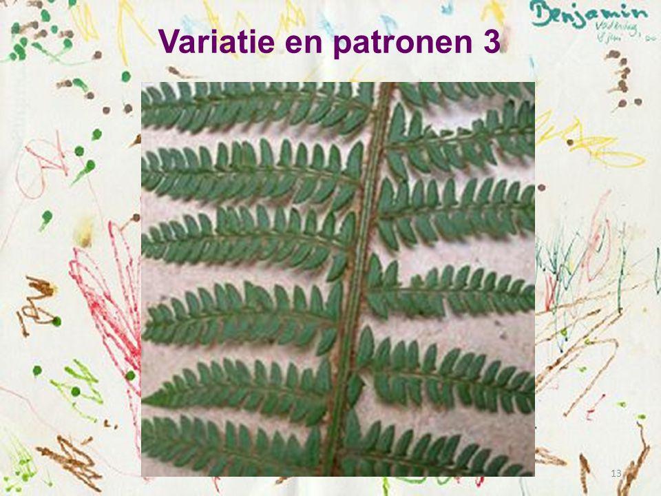 Variatie en patronen 3 13