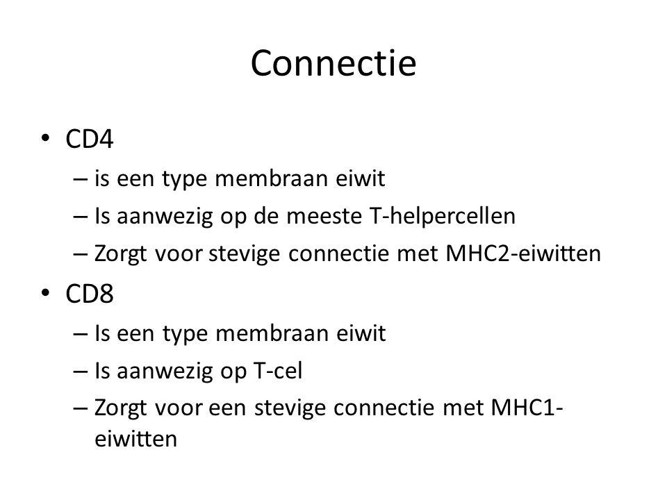 Connectie • CD4 – is een type membraan eiwit – Is aanwezig op de meeste T-helpercellen – Zorgt voor stevige connectie met MHC2-eiwitten • CD8 – Is een
