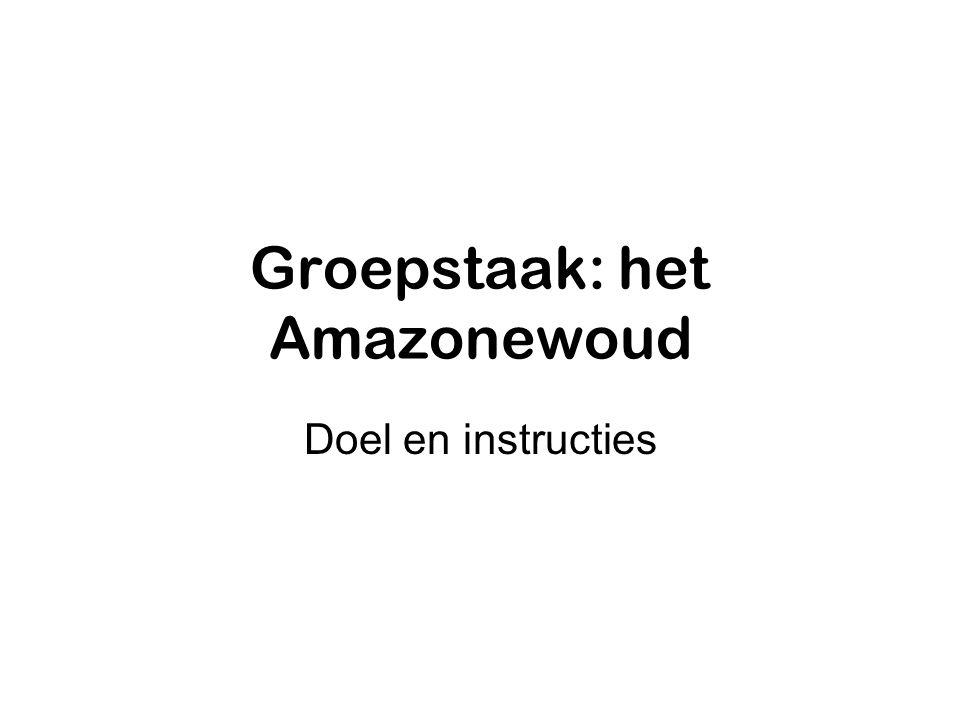 Groepstaak: het Amazonewoud Doel en instructies