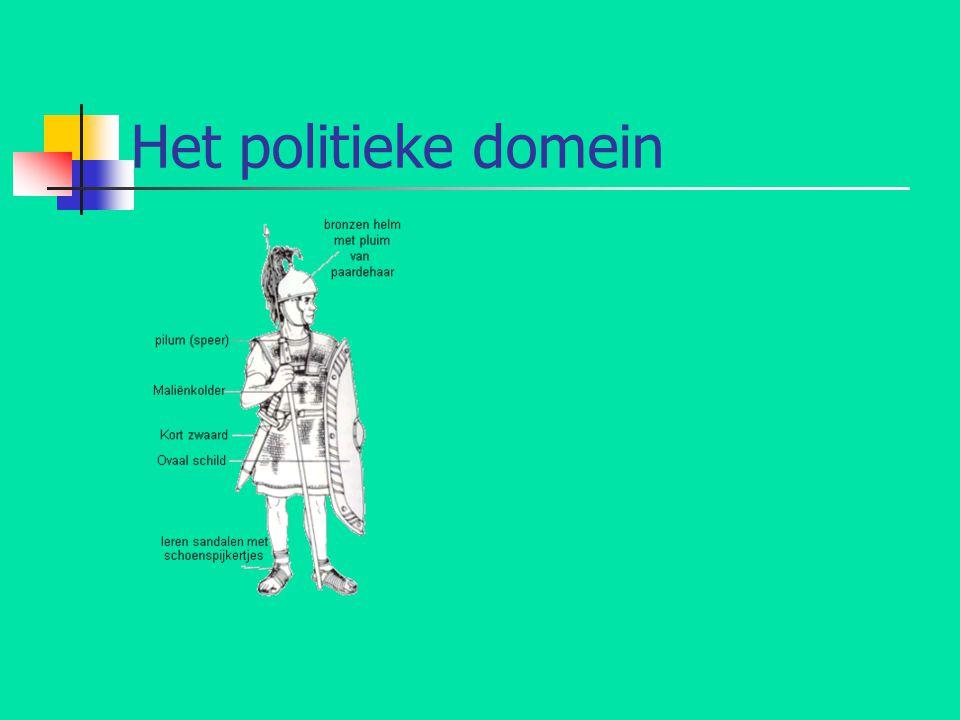 Het politieke domein