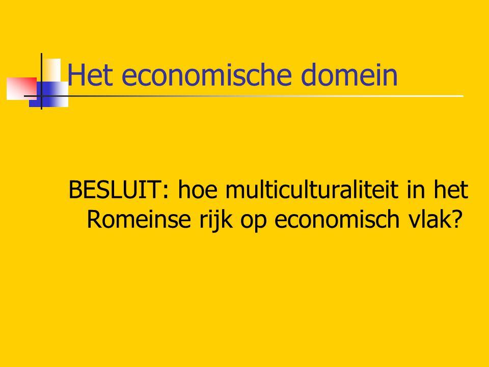 Het economische domein BESLUIT: hoe multiculturaliteit in het Romeinse rijk op economisch vlak?