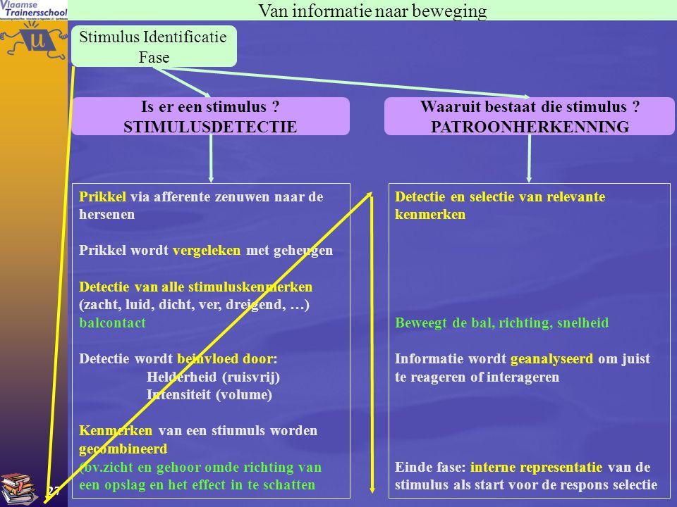 27 Stimulus Identificatie Fase Van informatie naar beweging Is er een stimulus ? STIMULUSDETECTIE Waaruit bestaat die stimulus ? PATROONHERKENNING Pri