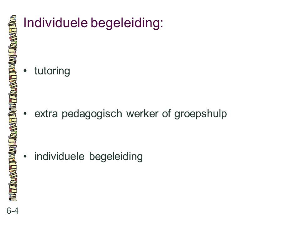 Extra pedagogisch werker of groepshulp: 6-5 •Kaleidoscoop •andere verdeling van taken