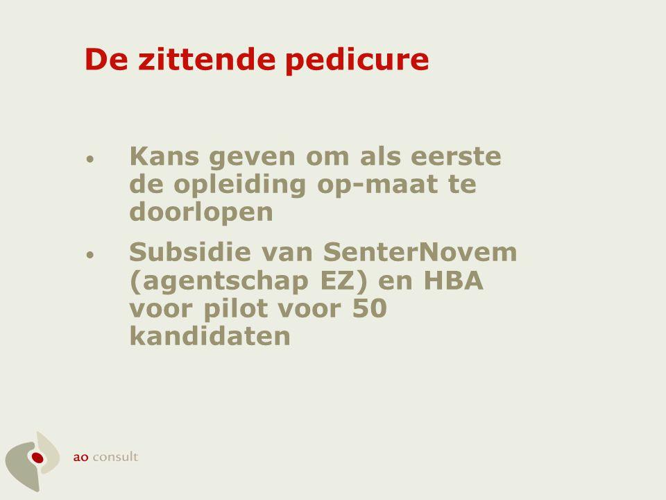 • Kans geven om als eerste de opleiding op-maat te doorlopen • Subsidie van SenterNovem (agentschap EZ) en HBA voor pilot voor 50 kandidaten De zitten