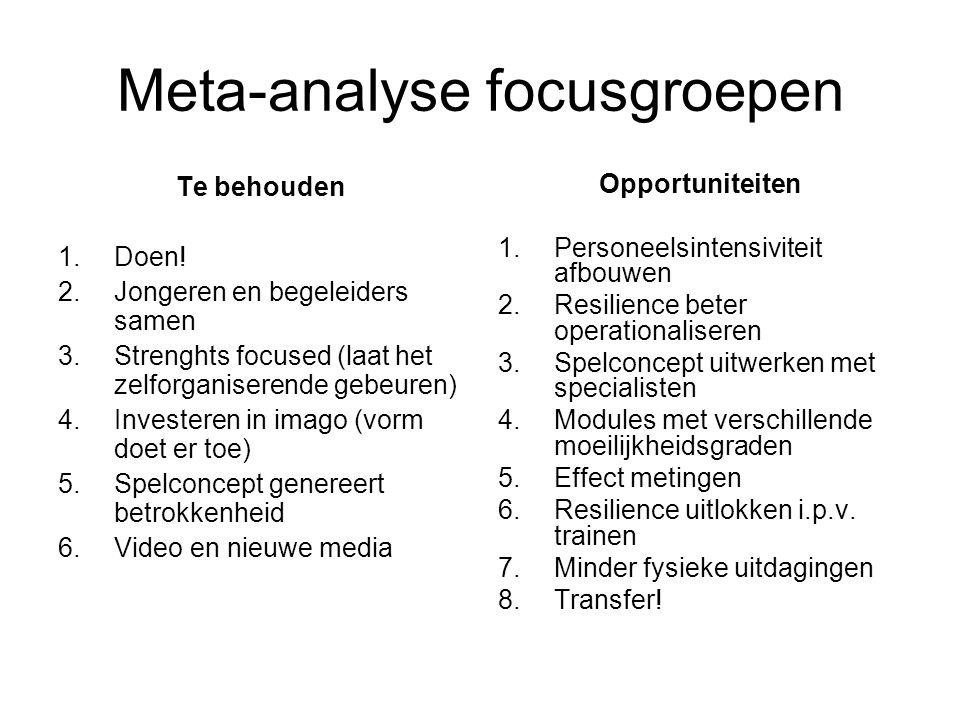 Meta-analyse focusgroepen Te behouden 1.Doen! 2.Jongeren en begeleiders samen 3.Strenghts focused (laat het zelforganiserende gebeuren) 4.Investeren i