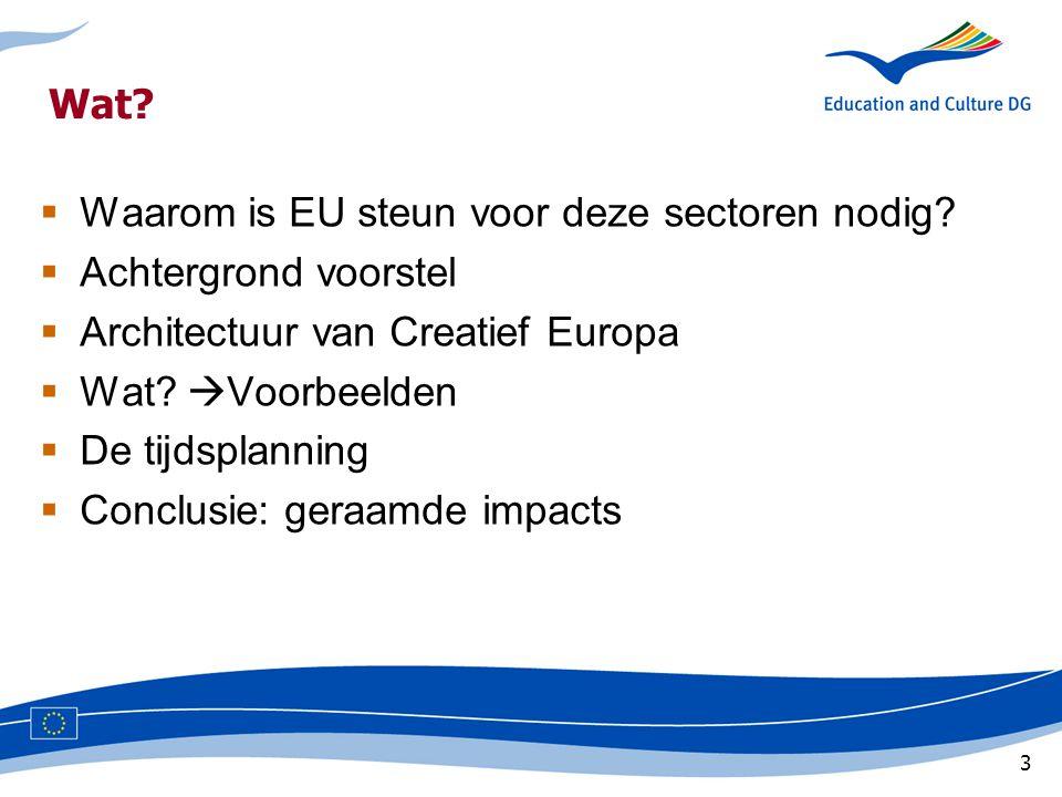 3 Wat.  Waarom is EU steun voor deze sectoren nodig.