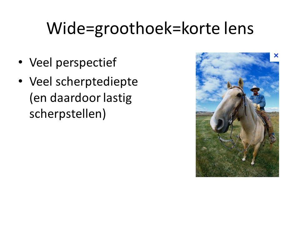 Wide=groothoek=korte lens • Veel perspectief • Veel scherptediepte (en daardoor lastig scherpstellen)