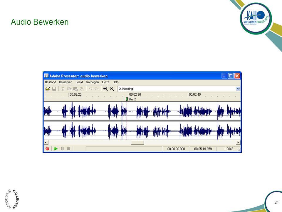 Audio Bewerken 24