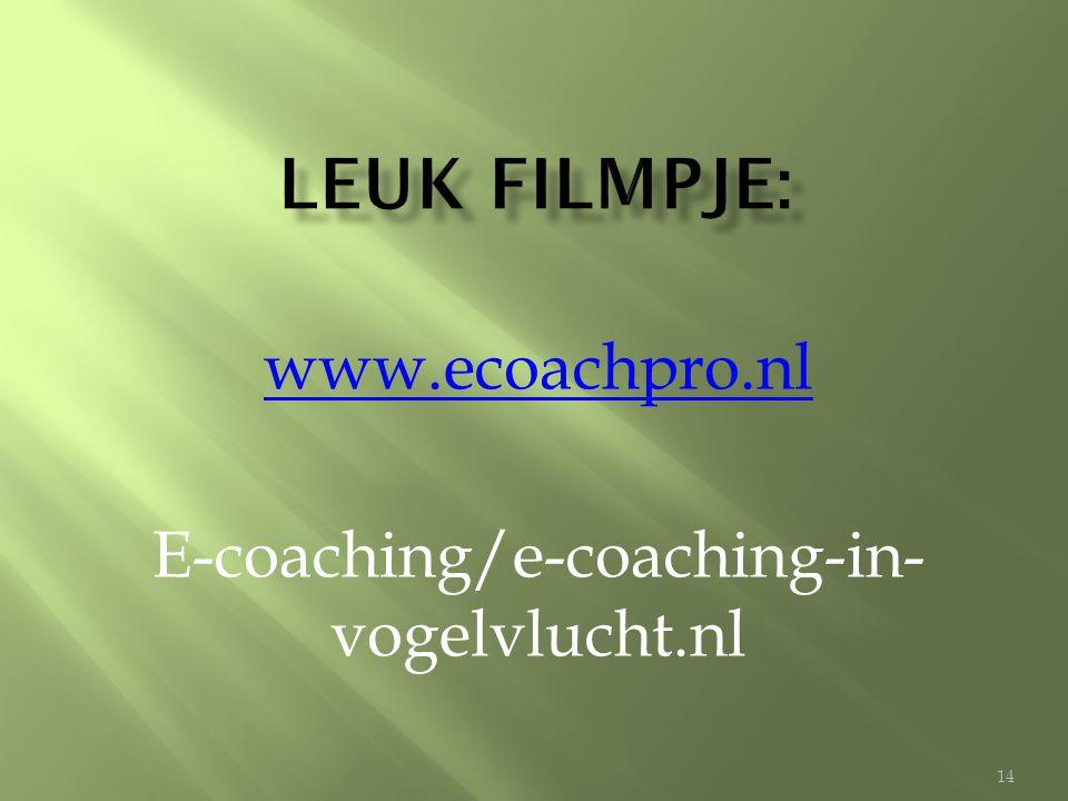 www.ecoachpro.nl E-coaching/e-coaching-in- vogelvlucht.nl 14