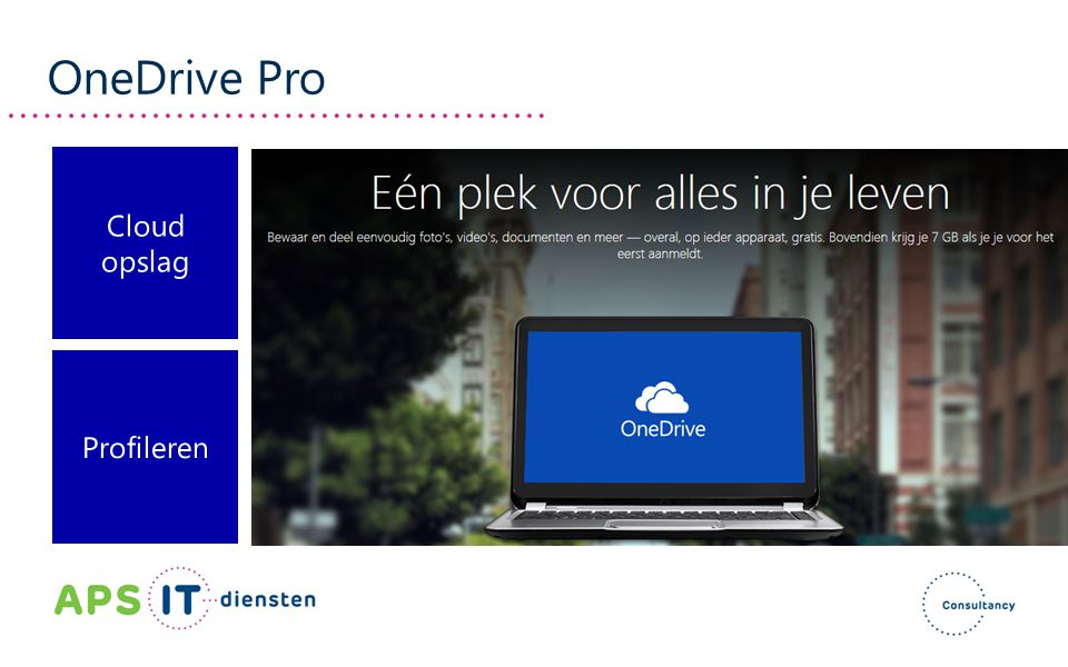 OneDrive Pro