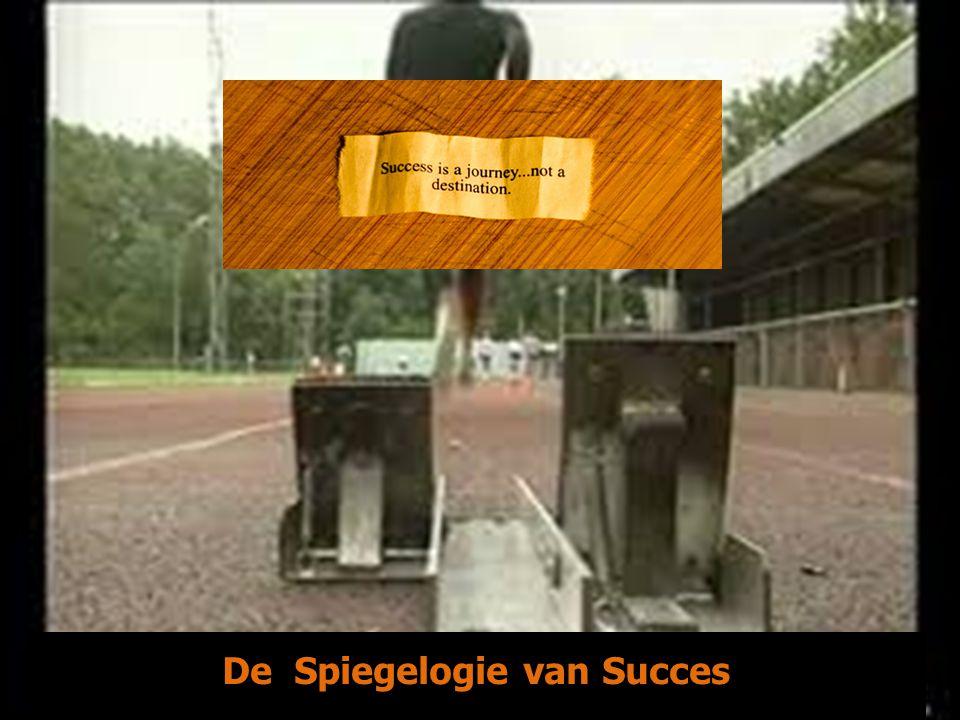 De Spiegelogie van Succes -