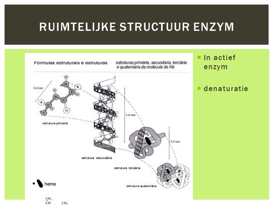  In actief enzym  denaturatie RUIMTELIJKE STRUCTUUR ENZYM