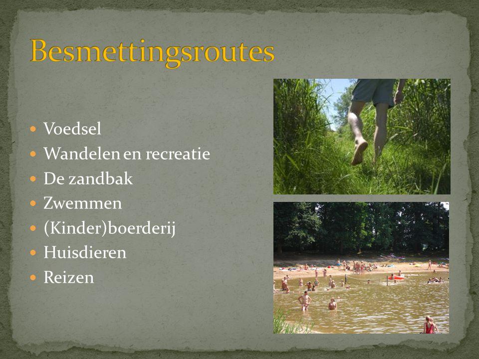  Voedsel  Wandelen en recreatie  De zandbak  Zwemmen  (Kinder)boerderij  Huisdieren  Reizen