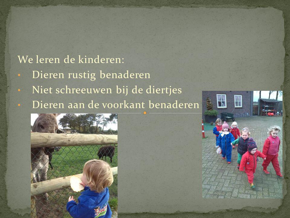 We leren de kinderen: • Dieren rustig benaderen • Niet schreeuwen bij de diertjes • Dieren aan de voorkant benaderen