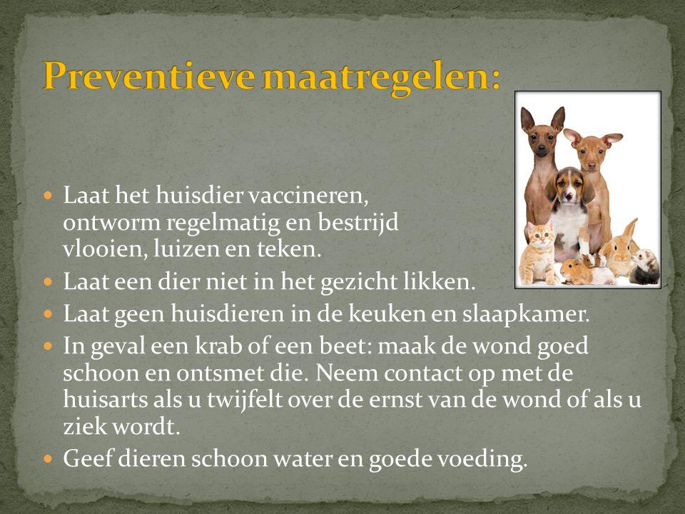  Laat het huisdier vaccineren, ontworm regelmatig en bestrijd vlooien, luizen en teken.  Laat een dier niet in het gezicht likken.  Laat geen huisd