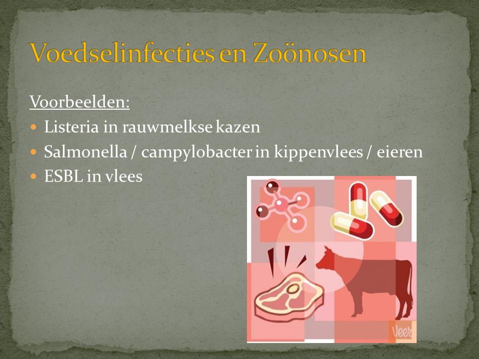Voorbeelden:  Listeria in rauwmelkse kazen  Salmonella / campylobacter in kippenvlees / eieren  ESBL in vlees