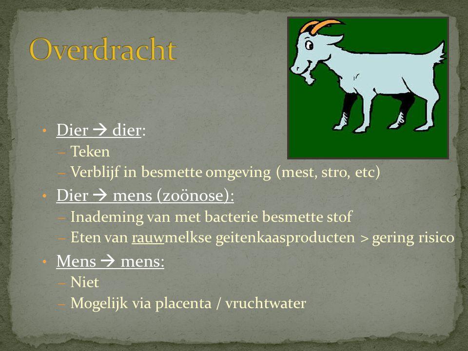 • Dier  dier: – Teken – Verblijf in besmette omgeving (mest, stro, etc) • Dier  mens (zoönose): – Inademing van met bacterie besmette stof – Eten va