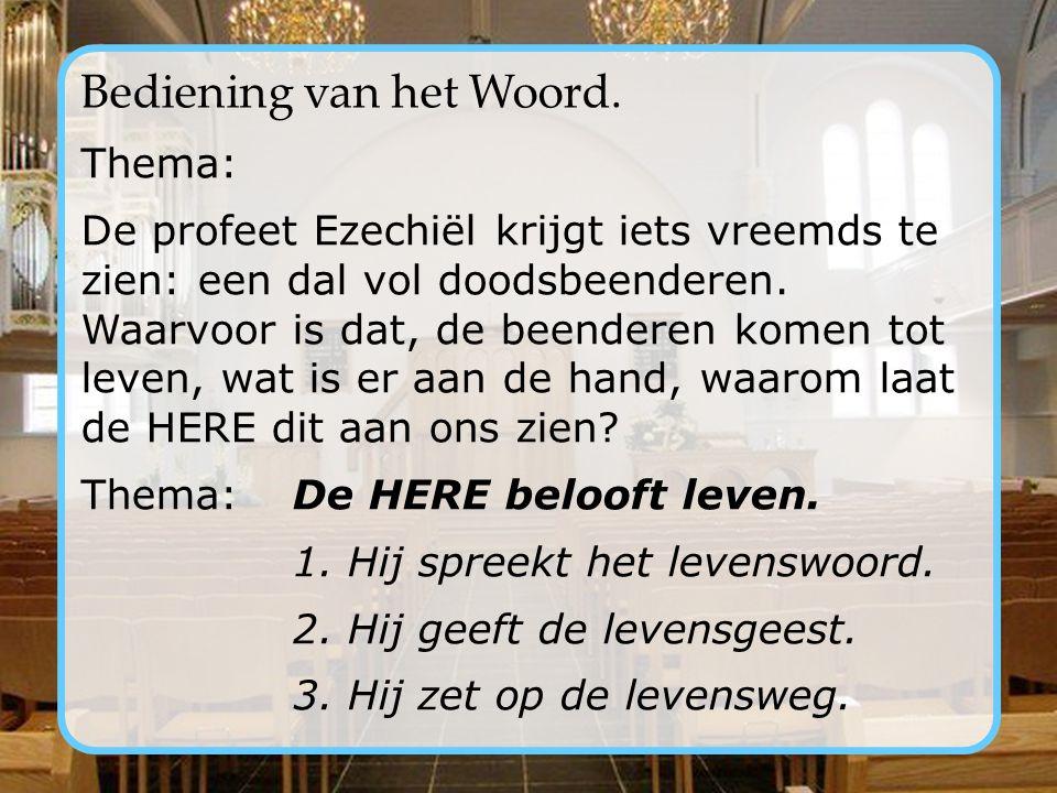 Goedemorgen! Welkom in de ochtenddienst van de Noorderkerk te Bunschoten-Spakenburg. In deze dienst zal voorgaan: ds. H.Sj. Wiersma De muzikale begele