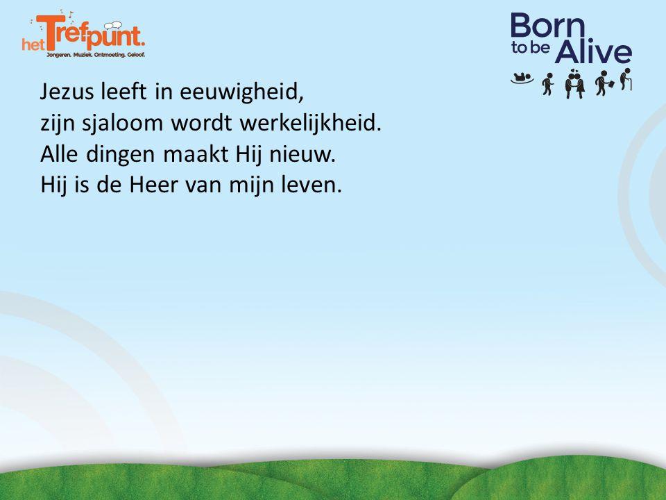 Tref ons! zoek naar 'het Trefpunt' @ons_trefpunt www.youtube.com/user/hettrefpunt www.het-tref.nl